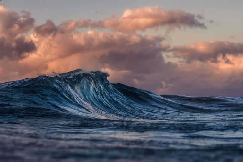 A wave in the sea